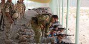 En australisk soldat hjälper en irakisk soldat med vapnet under en skjutövning. En del av den multinationella insatsen. Paris Maxey/US Army via Försvarsmakten.