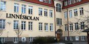 Linnéskolan i Limhamn. Malmö stad.
