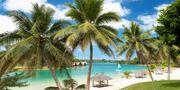 Vanuatu är ett fattigt land, men desto rikare på vacker natur. Wikicommons