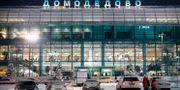 Domodedovos flygplats utanför Moskva. MAXIM ZMEYEV / AFP