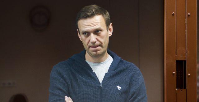 Aleksej Navalnyj TT NYHETSBYRÅN