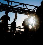 Oljearbetare i Saudiarabien. Amr Nabil / TT NYHETSBYRÅN