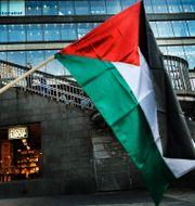 Arkivbild. Palestinsk flagga.  Magnus Hjalmarson Neideman / SvD / TT / TT NYHETSBYRÅN