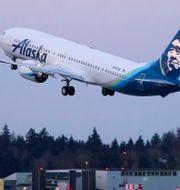Ett Boeing 737 Max-plan. Ted S. Warren / TT NYHETSBYRÅN