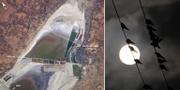 Satellitbild på Sambhar Salt Lake och illustrationsbild på fåglar. Wikimedia/Nasa och TT