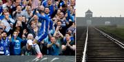 Chelseas rasistiska fans ska skickas på utbildningsresor till koncentrationsläger. TT