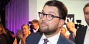 Jimmie Åkesson (SD) Adam Ihse/TT / TT NYHETSBYRÅN