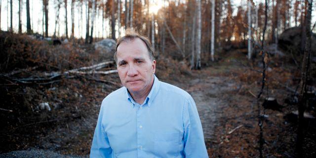 Stefan Löfven i samband med en hyllningskonsert i Kårböle utanför Ljusdal efter sommarens skogsbränder. Mats Andersson/TT / TT NYHETSBYRÅN