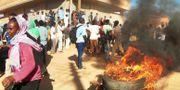 Protester i Khartoum.  Mohamed Nureldin Abdallah / TT NYHETSBYRÅN