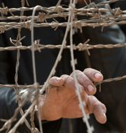 En person bakom taggtråd vid en gräns till Syrien.  Vadim Ghirda / TT NYHETSBYRÅN
