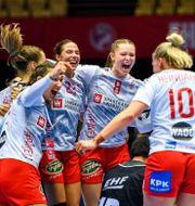 Danska laget firar. LUDVIG THUNMAN / BILDBYRÅN