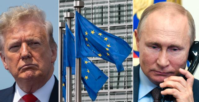 Donald Trump / EU-flaggor i Bryssel / Vladimir Putin TT