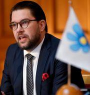 Sverigedemokraternas partiledare Jimmie Åkesson. Henrik Montgomery/TT / TT NYHETSBYRÅN