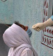Kvinna i Indien testas för viruset. Mahesh Kumar A / TT NYHETSBYRÅN