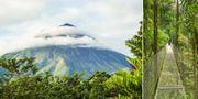 La Fortuna i Costa Rica har just utsetts till det bästa resmålet i världen för den som sätter upplevelser främst av Tripadvisors användare. Istock