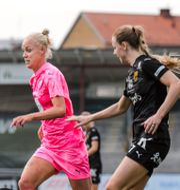 FC Rosengård CHRISTIAN ÖRNBERG / BILDBYRÅN