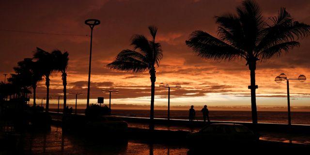 Strandpromenaden i Mazatlan när första stormvindarna når in. HENRY ROMERO / TT NYHETSBYRÅN