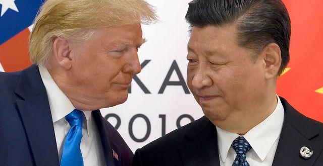 Trump och Kinas ledare Xi Jinping. Susan Walsh / TT NYHETSBYRÅN