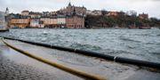 Högt vatten vid Gamla stan i Stockholm.  Jessica Gow/TT / TT NYHETSBYRÅN