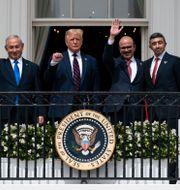 Israels premiärminister Benjamin Netanyahu och USA:s president Donald Trump – här tillsammans med utrikesministrarna för Bahrain och Förenade arabemiraten. Alex Brandon / TT NYHETSBYRÅN