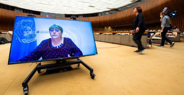 FN:s människorättschef Michelle Bachelet.  Martial Trezzini / TT NYHETSBYRÅN