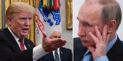 Trump / Putin TT