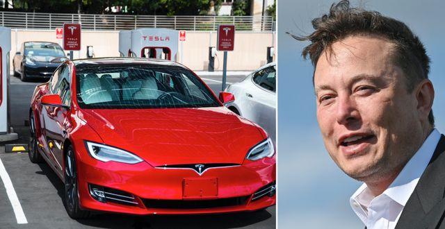 Arkivbilder: Elon Musk,  TT