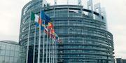 EU-parlamentet i Brysse.  SEPP SPIEGL
