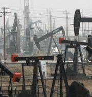 Oljefält i Bakersfield, Kalifornien. Arkivbild. Jae C. Hong / TT NYHETSBYRÅN