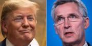 Trump / Stoltenberg TT