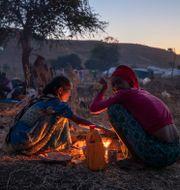 Kvinnor i ett flyktingläger i Tigray. Nariman El-Mofty / TT NYHETSBYRÅN