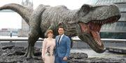 """Arkivbild: Skådespelarna Bryce Dallas Howard och Chris Pratt spelade båda i """"Jurassic World: Fallen Kingdom"""".  Joel C Ryan / TT NYHETSBYRÅN"""
