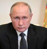Vladimir Putin/gasledningen Nordstream 2. TT