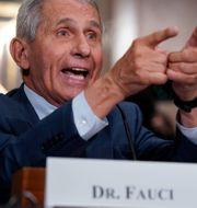 USA:s smittskyddschef Anthony Fauci. J. Scott Applewhite / TT NYHETSBYRÅN