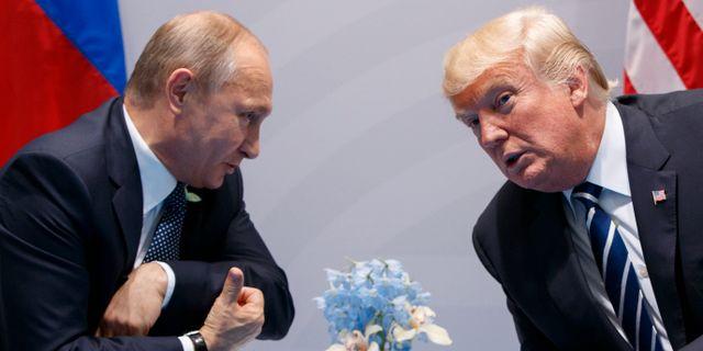 Putin och Trump möttes vid G20-mötet i juli 2017.  Evan Vucci / TT / NTB Scanpix
