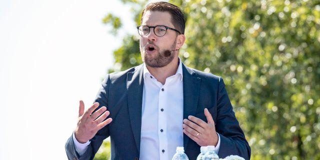 Jimmie Åkesson.  Johan Nilsson/TT / TT NYHETSBYRÅN