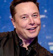 Elon Musk. Britta Pedersen / TT NYHETSBYRÅN