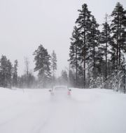 Vinterväglag. Henrik Montgomery/TT / TT NYHETSBYRÅN