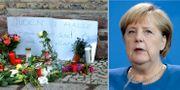 Angela Merkel.  TT.