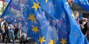 En EU-flagga vajar under en protest mot den polska regeringen i Warszawa år 2017. Alik Keplicz / TT NYHETSBYRÅN