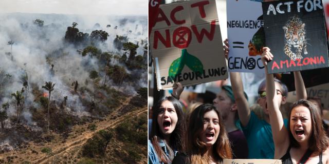 "Brandrök i Amazonas / Klimataktivistgruppen ""Extinction Rebellion"" protesterar i London. TT"