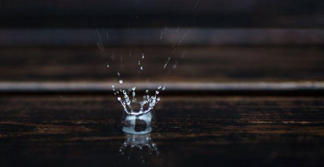 En vattendroppe. Erik Simander/TT / TT NYHETSBYRÅN