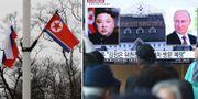 Rysslands och Nordkoreas flagga i Vladivostok/Nyhetsprogram om Kim Jong-Un och Vladimir Putin. TT