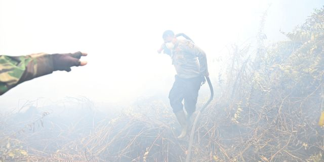 Brandmän kämpar mot bränderna i Kampar i Indonesien. ADEK BERRY / AFP