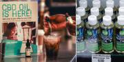 Illustrationsbild. Produkter med CBD-olja i USA. TT