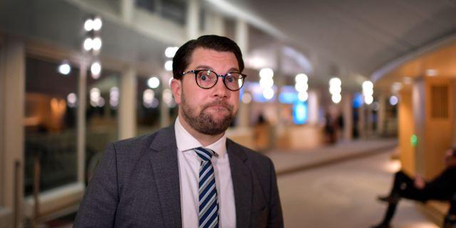 SD:s partledare Jimmie Åkesson. Anders Wiklund/TT / TT NYHETSBYRÅN