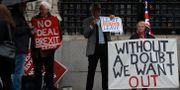 Brexitförespråkare demonstrerar i London. Alastair Grant / TT NYHETSBYRÅN
