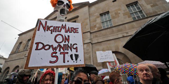 Brexit-demonstranter. Kirsty Wigglesworth / TT NYHETSBYRÅN