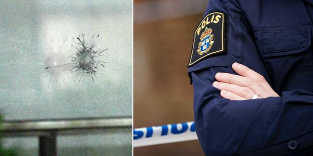 Kraver svar fran regeringen efter polisens dodsskjutning