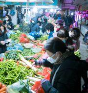 Marknaden i Wuhan. Xiao Yijiu / TT NYHETSBYRÅN
